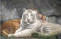 High quality animal oil painting Two Tigers on canvas Guaranteed