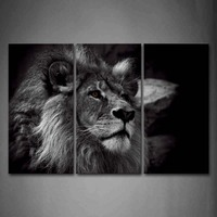 3 Panels Unframed Wall Art Pictures Lion Head Portrait Canvas Print Modern Animal Posters No Frame For Living Room Decor