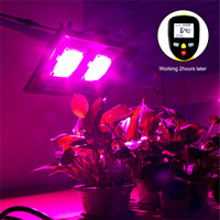 COB Led Grow Light Full Spectrum 200W Waterproof IP67 for Vegetable Flower Indoor Hydroponic Greenhouse Plant Lighting Lamp