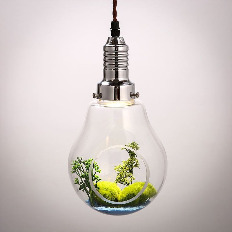 American Creative glass bulb plant vase plants restaurant decoration lighting lamp Pendant Lights personality za resurrection plants hydrophile jericho rose plant