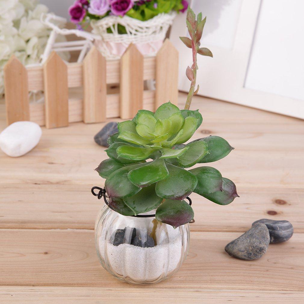 Artificial Succulent Without Pot Desert Plant Garden Home Landscape Deco DIY Artificielle des Plantes succulentes Jardin