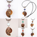 Attractive Natural Ammonite Conch Shell Mix-Crystal Stone Pendant Bead 1PCS   (No Chain)