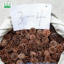Naturally Dried Pine Cones Pinecone Xmas New Year Holiday Pa