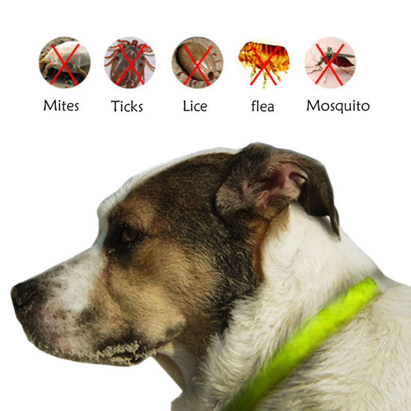 Soft Silicon Pet insect repellent collar Dog Cat Repeller Tick Flea Mosquito circle Non toxic Deworming bracelet Pest control in Repellents from Home Garden