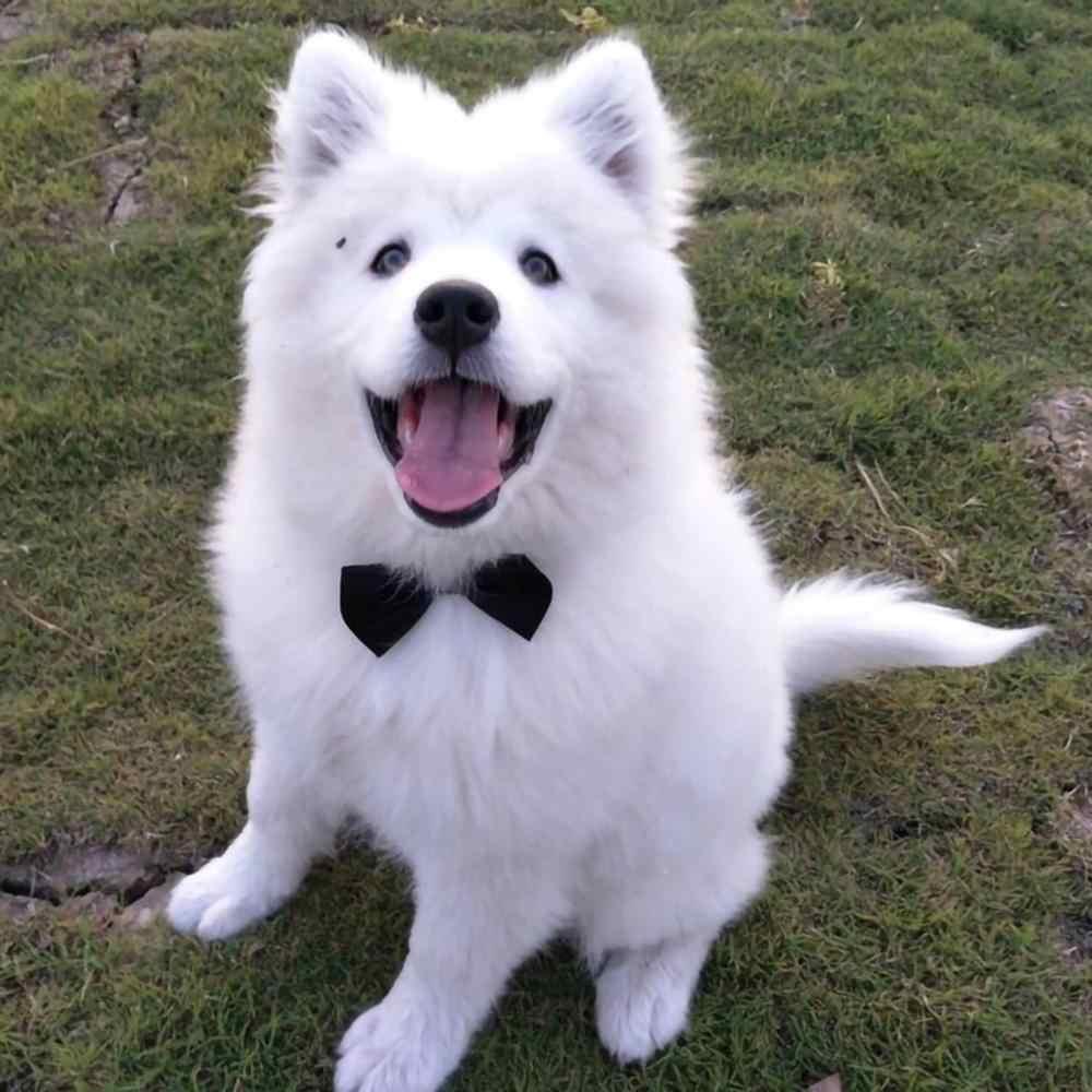 Disesuaikan Anjing Peliharaan Kucing Dasi Kostum Dasi Kerah untuk Anjing Kecil Anak Anjing Grooming Aksesoris