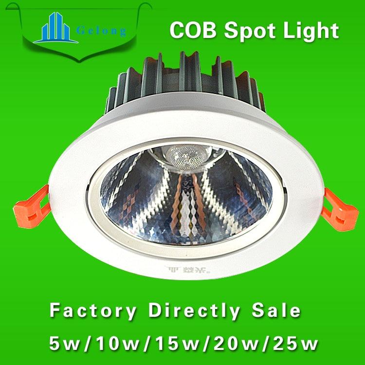 ФОТО New Arrival Warm/Cold White 1Pcs COB LED Spot light led ceiling lamp AC85-265V /25w Spot Light