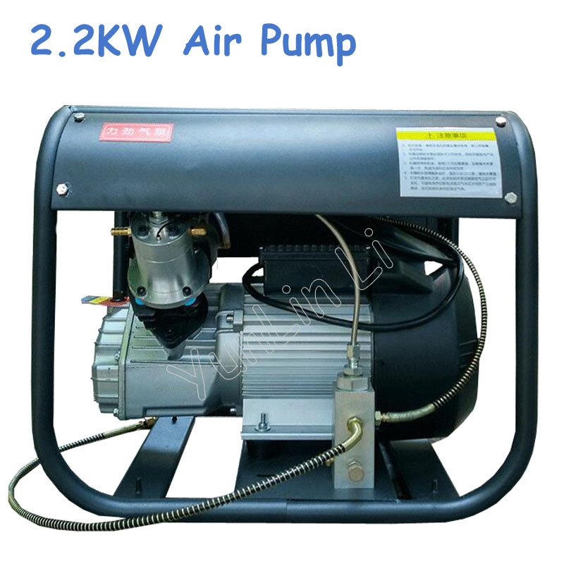 220V 2.2KW Air Pump Double Cylinder Electric Air Pump High Pressure Paintball Air Compressor for Airgun Rifle oil free air compressor high pressure gas pump spray woodworking air compressor small pump 3 1100 100l