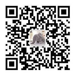 QQ20190107165141_conew1