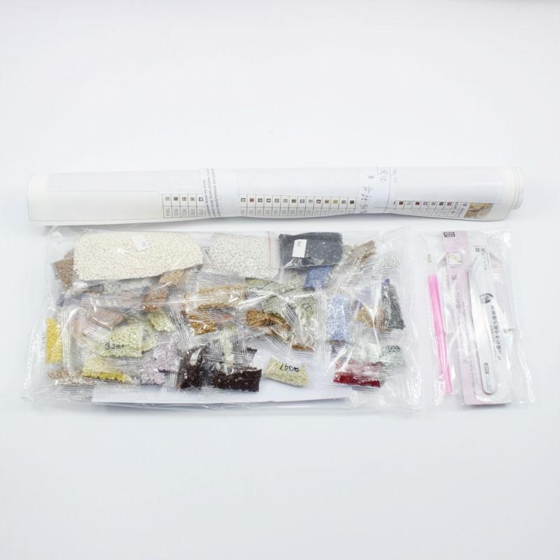 5D DIY Almaz Rəsm kəllə afişası Qadın Almaz Nakış Mozaika - İncəsənət, sənətkarlıq və tikiş - Fotoqrafiya 3