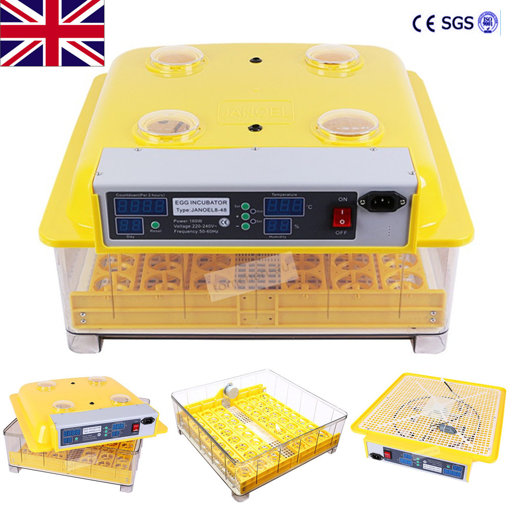 Egg Incubator Digital Temperature Hatchery brooder Machine   Chickens Ducks Geese Poultry Quails Parrots Pigeons pammy riggs keeping chickens for dummies