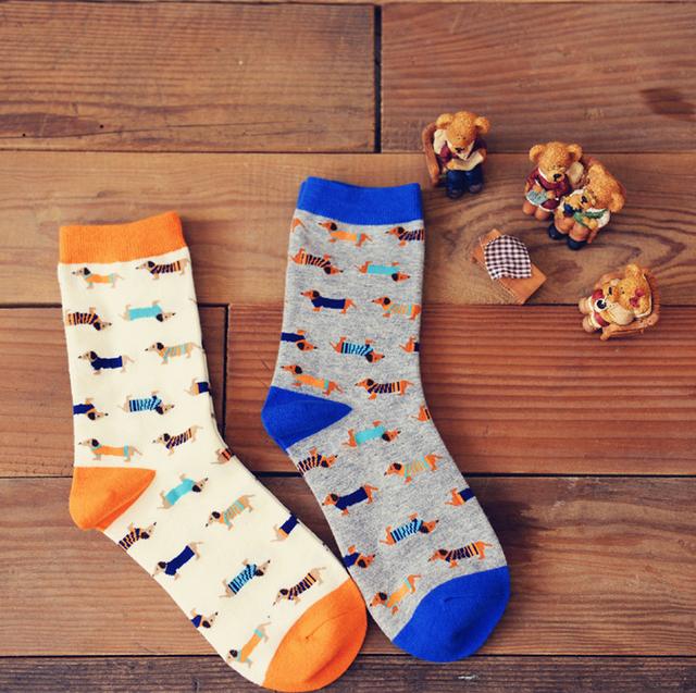Dachshund Puppy Socks