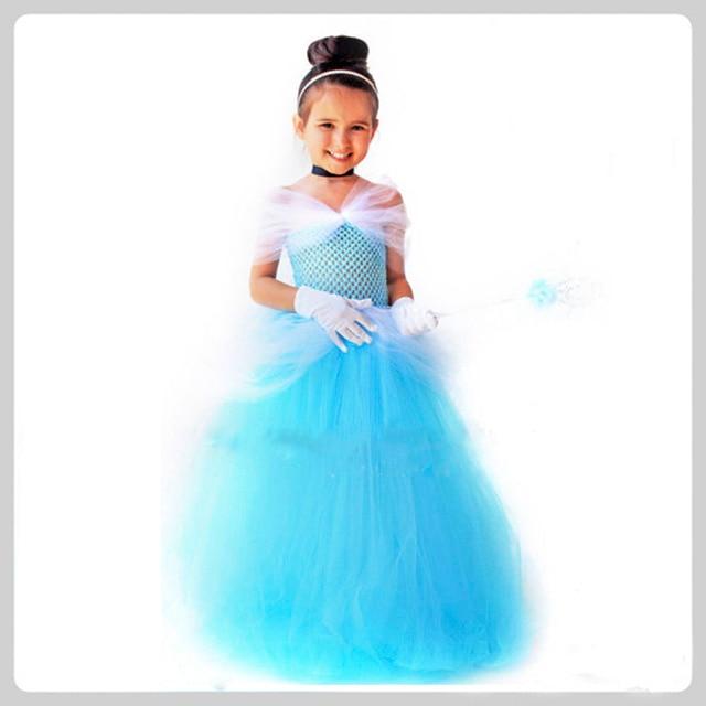 Storybook Princess Cinderella Birthday Party Tutu Dress