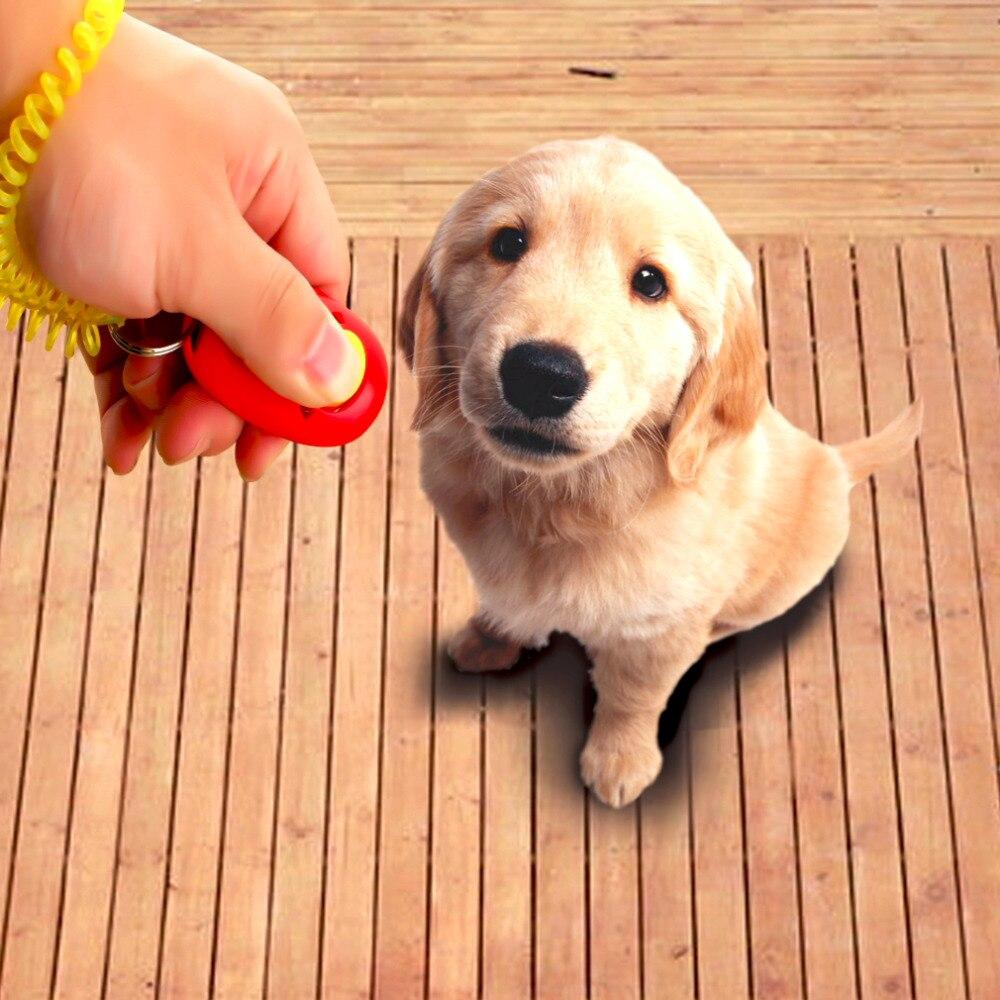 Ambitieus Huisdier Van De Hond Klik Clicker Training Gehoorzaamheid Agility Trainer Hulp Wrist Strap