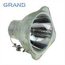 Uyumlu projektör lamba ampulü EC. J2101.001 Acer PD100S PD100 PD100D PD120 PD120D PD120P XD1170D XD1250 mutlu BATE