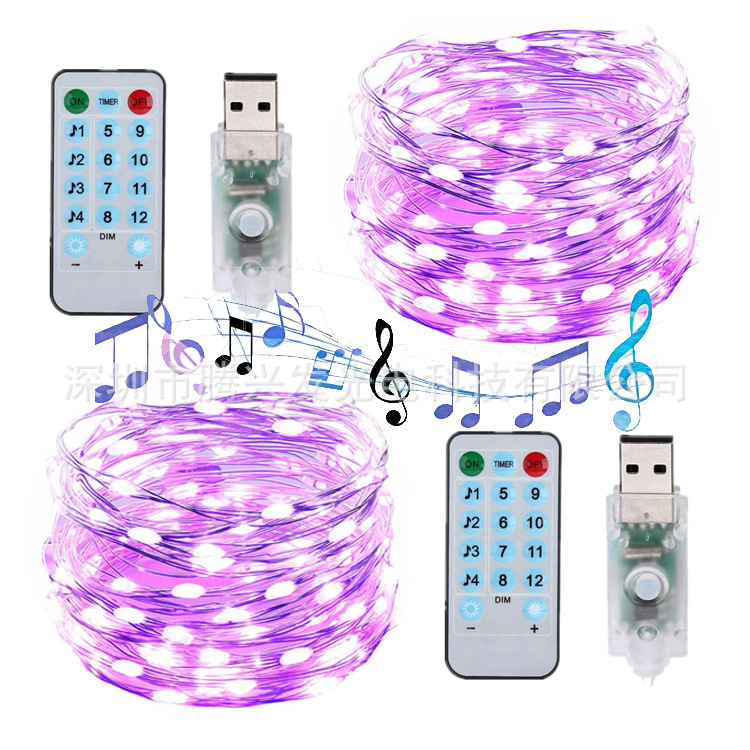 Wenhsin New Music Sound Control USB Warm Light 8 Mode 100LED Copper Wire String IP65