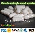 GMP Certified 100 pcs Cápsulas de Extrato de Garcinia Cambogia 75% HCA Fat Burner Dieta & Desintoxicação Perda de Peso Pílulas Dietéticas Slim frete grátis