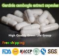 GMP Certified 100pcs Garcinia Cambogia Extract Capsules 75% HCA  Diet Pills Fat Burner Diet&Weight Loss Detox Slim Free shipping