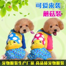 Manufacturers selling pet dog clothes qiu dong High quality pet clothes Lovely to winter jacket