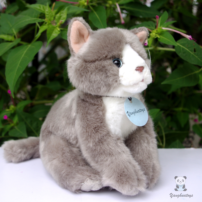 ộ_ộ ༽Simulación peluche gatos peluche muñeca niños Juguetes regalos ...