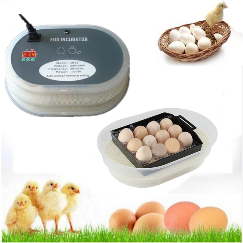 Automatic Egg Turning Incubators 12 Eggs Hatcher Brooder Poultry Chicken Goose Duck Quail Poultry Brooder ce certificate poultry hatchery machines automatic egg turning 220v hatching incubators for sale