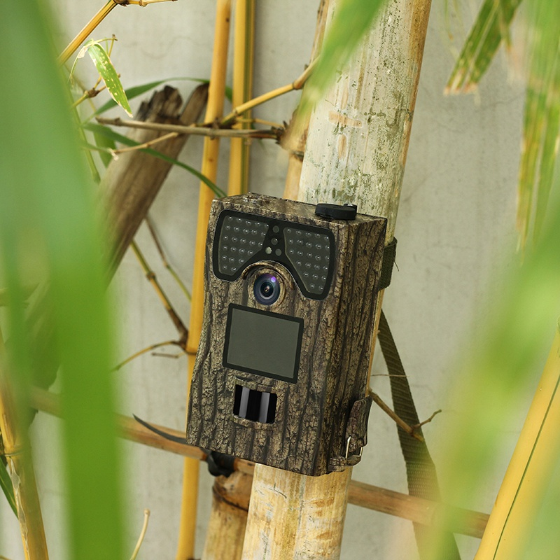 Hunting camera SV TCM12C High Definition Hunting Camera Waterproof Wide Angle Monitoring Camcorder Trail Observing Camera Video