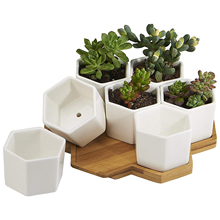 Planter Pots Indoor, 7 Pack 2.75 Inch Modern White Ceramic Small Hex Succulent Cactus Flower Plant Pot with Bamboo Tray for In