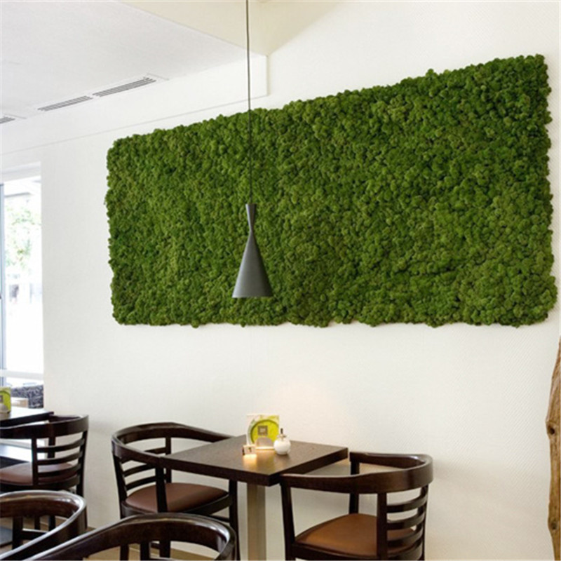 дизайнеры дизайн ковролин на стене фото ней можно пешком