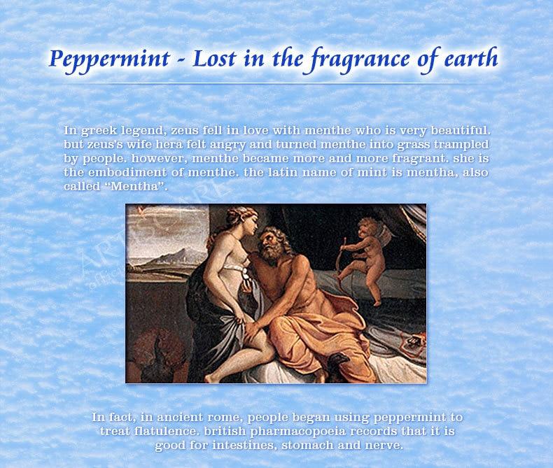 peppermint_08