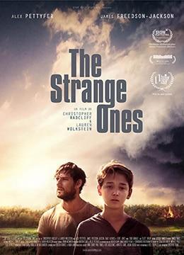 《只杀陌生人》2017年美国剧情,惊悚电影在线观看