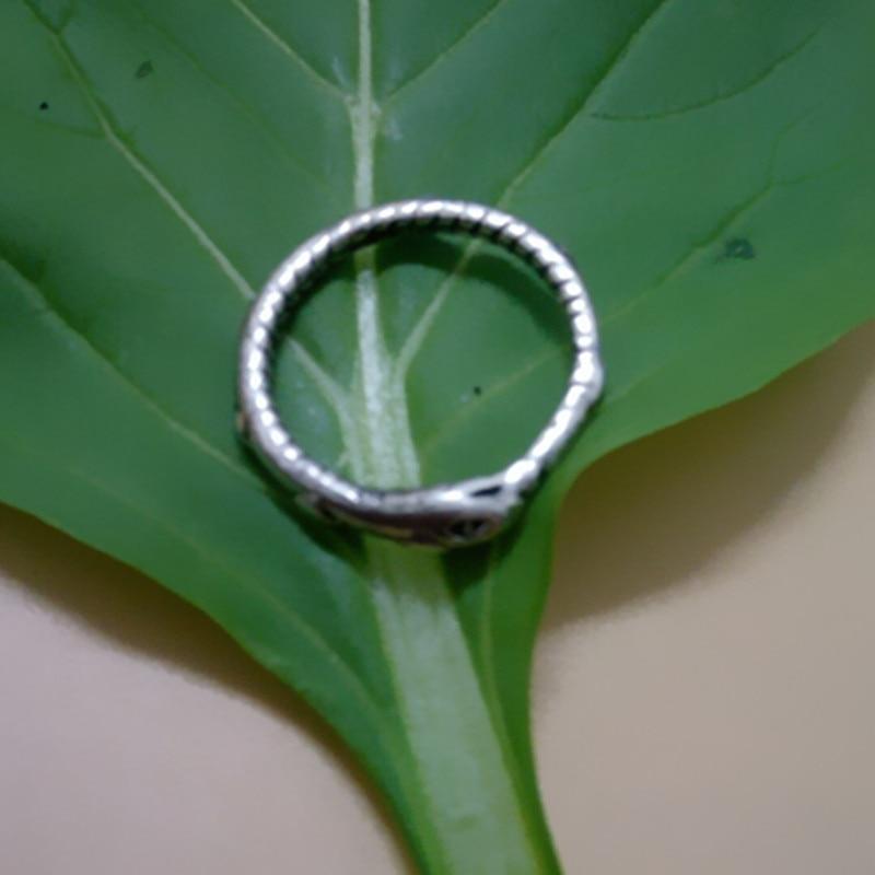 Drop shipping Retail Ouroboros prsten Šarmantni drevni srebrni - Modni nakit - Foto 4