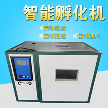 Fully Automatic Home Type Chick Duck Goose Egg Incubators Small Hatching Machine 176 Incubation Controller China