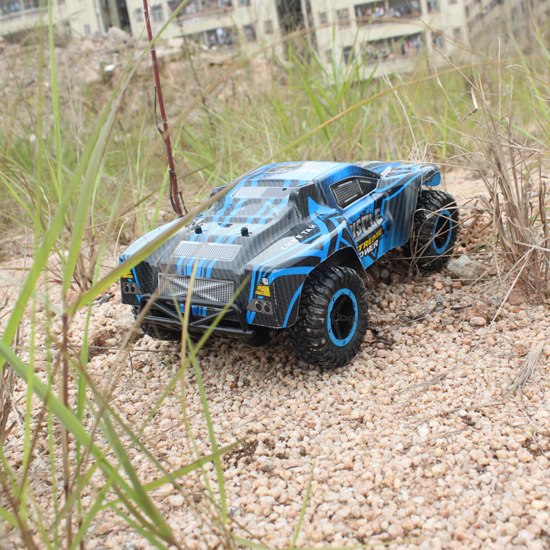 remote control cars IMG_4050