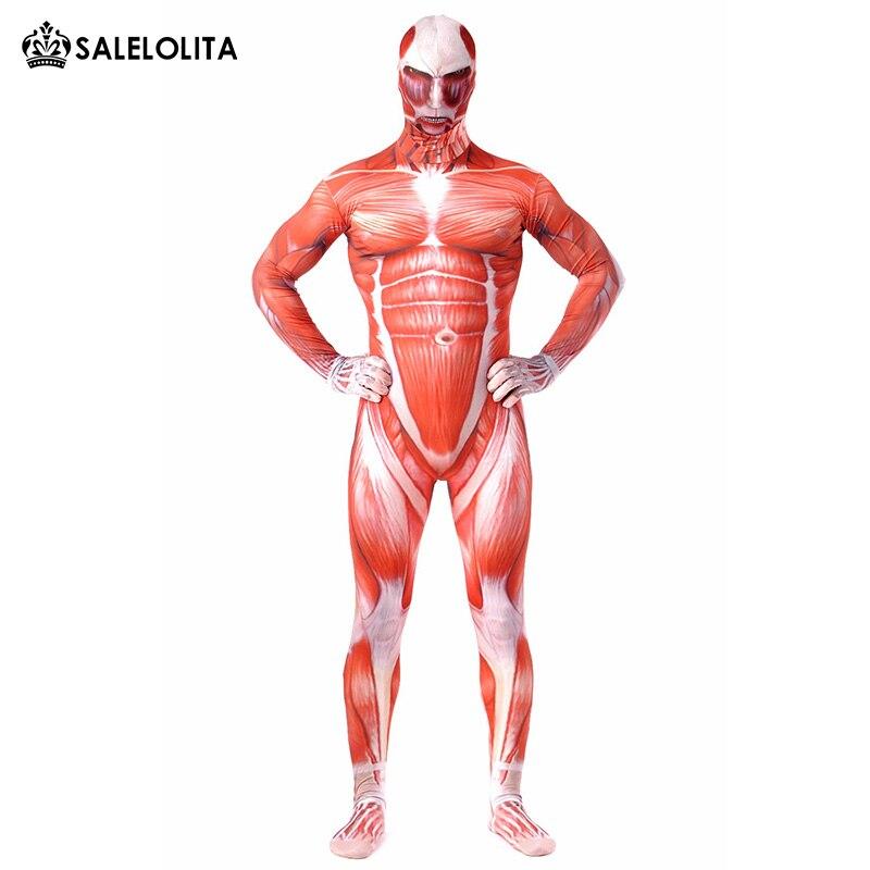 Ziemlich Menschlicher Muskel Anatomie Modell Galerie - Anatomie ...