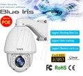 Blue Iris ONVIF 20X Zoom Auto Tracking High speed Dome PTZ Câmera IP FULL HD 2 MP Full HD 1080 P POE CCTV câmera