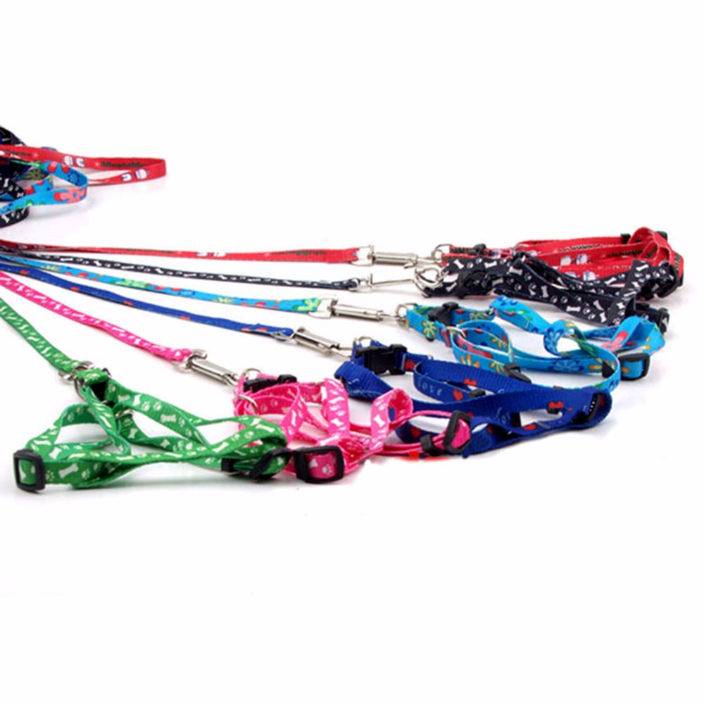 Small Dog Pet Cat Rope Collars Lead Leash Adjustable Harness Chest Strap Pets Products in Collars from Home Garden