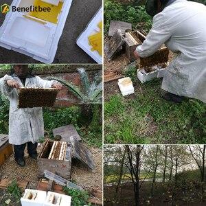 Image 5 - Colmena de apicultura, colmena de cosecha, colmena de Reina, colmena de acoplamiento, herramienta de Apicultura