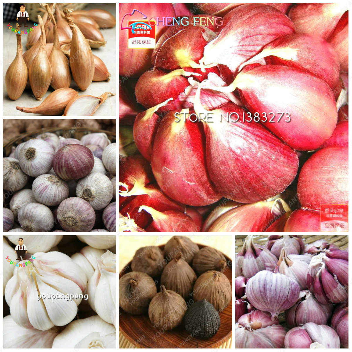 200Pcs Garlic Bonsai Pure Natural And Organic Healthy And Delicious Pungent Spice Vegetable plants Kitchen Seasoning Food garden