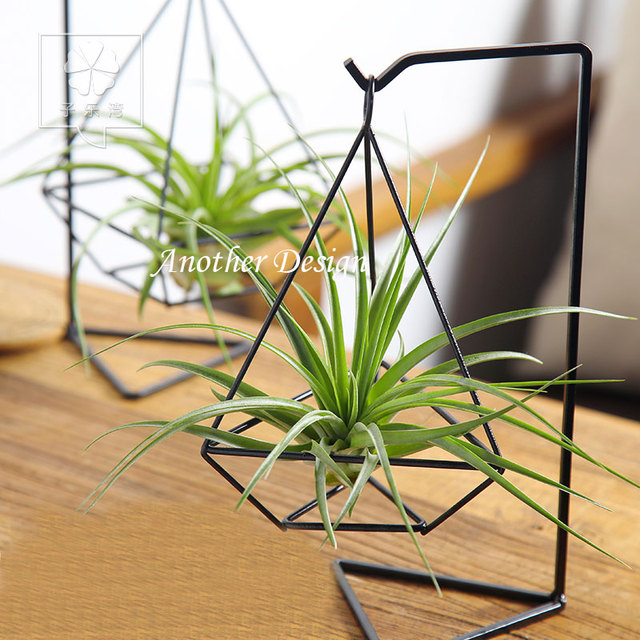 Iron Shelf Pots Diamond Shape Metal Pots Crafts Flower Pots Planters Home Decoration Party Bar Creative
