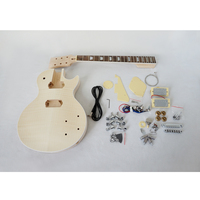 China Aiersi Brand Custom LP style DIY Electric Guitar Kits Model EK 004
