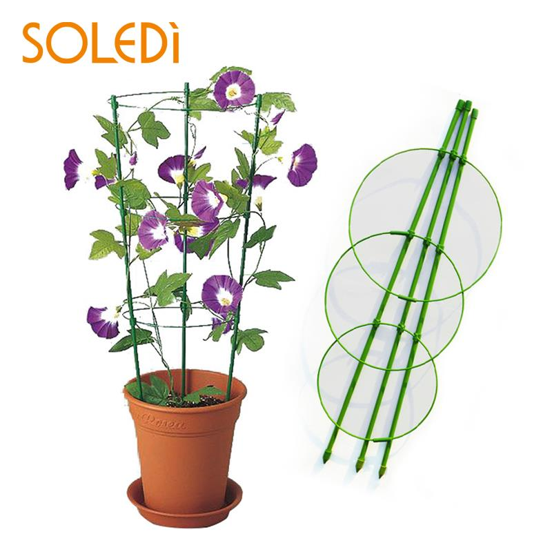 60cm Flower Plants Clematis Climbing Rack Support Shelf House Plant Growth Scaffold Ladder Building Garden Tool Construction Tools Ladders