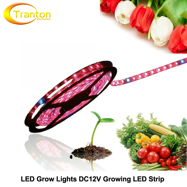 LED Grow Lights DC12V Growing LED Strip 5050 IP20 IP65 Plant Growth Light for Greenhouse Hydroponic plant, 5m/lot