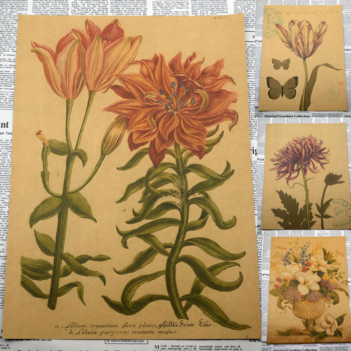 Vintage Paper Retro Anime Poster Flowers And Plants