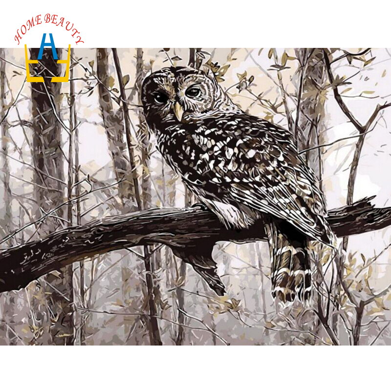 Coloring By Numbers On Canvas Owl Wall Pictures For Living