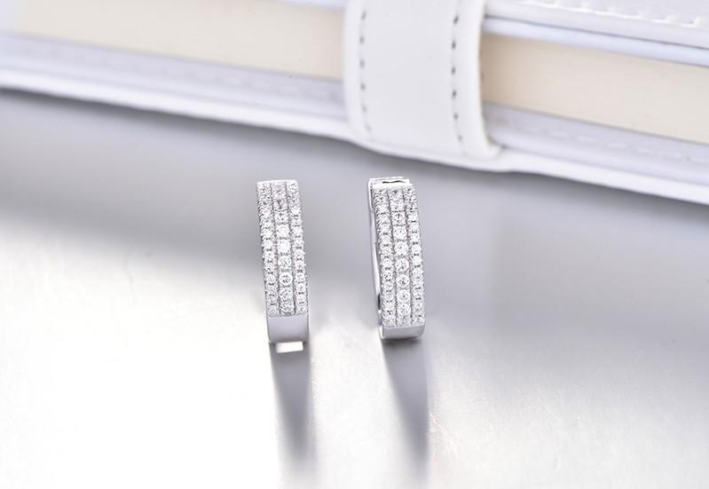 925 sterling earrings hoops for women DE06900A (3)