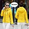 Yellow-Hood