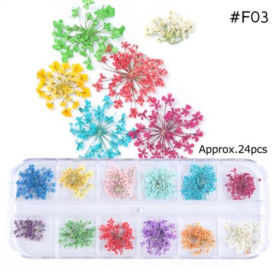 Сухоцветы лист ногтей украшения натуральный наклейка в виде цветка 3D сухой для маникюра ногтей наклейки ювелирные изделия УФ Гель-лак Маникюр TRFL-1 - Цвет: F03