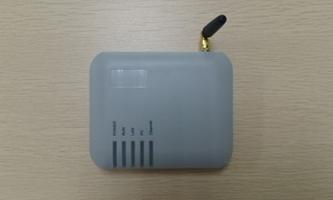 Image 2 - מקורי DBL 1 SIM GoIP VoIP GSM Gateway (IMEI לשינוי, SIP & H.323, VPN PPTP, SMS ) GoIP1 עבור IP PBX קידום