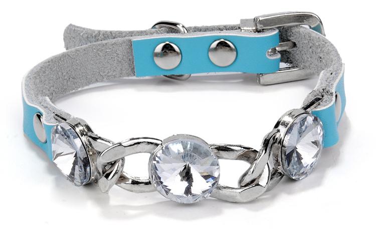 Dog Collar (2)
