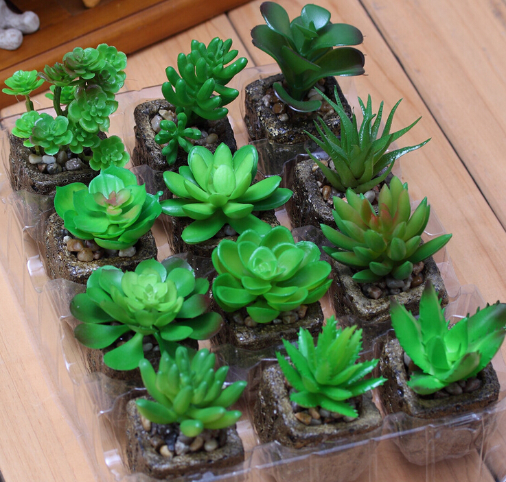Mini Artificial Succulent Plant With Vase Desert Rose Plastic Flower Green Plant Table Decoration Greenery Plant Free Shipping