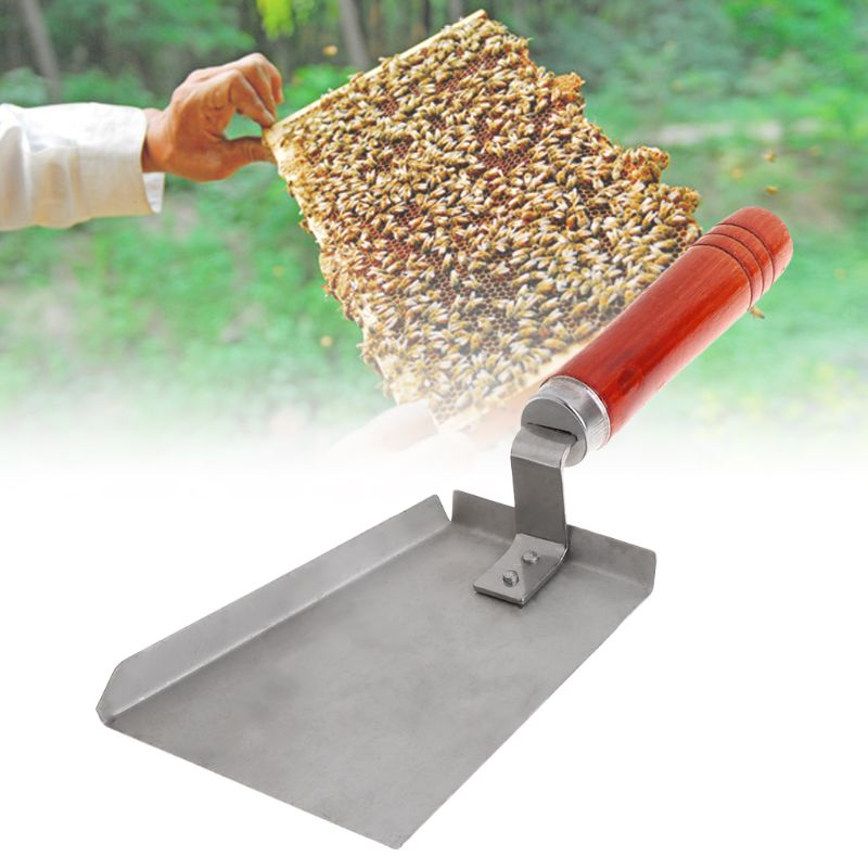 Beekeeping Cleaning Shovel Stainless Steel Wood Handle Bee Case Cleaner Tools Hive Beekeeper Equipment-in Beekeeping Tools from Home & Garden